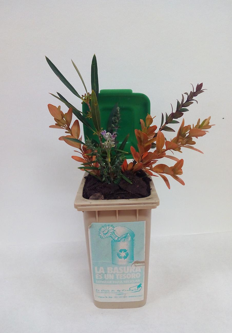 Fotografía ¡Si reciclas, florecerá! de Ainara Rodríguez Núñez, galardonada con el tercer premio.