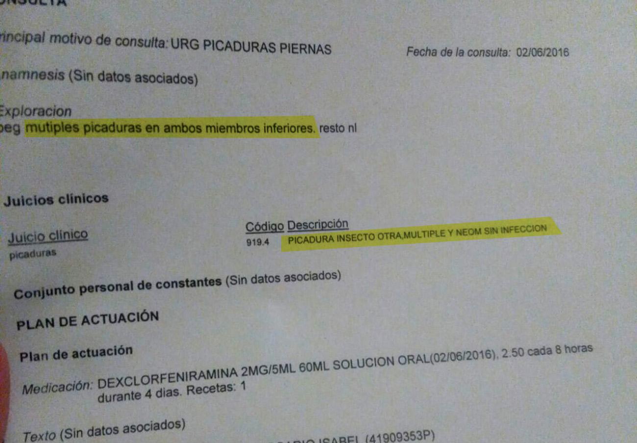 Informe médico de uno de los alumnos afectados por las nuevas picaduras.