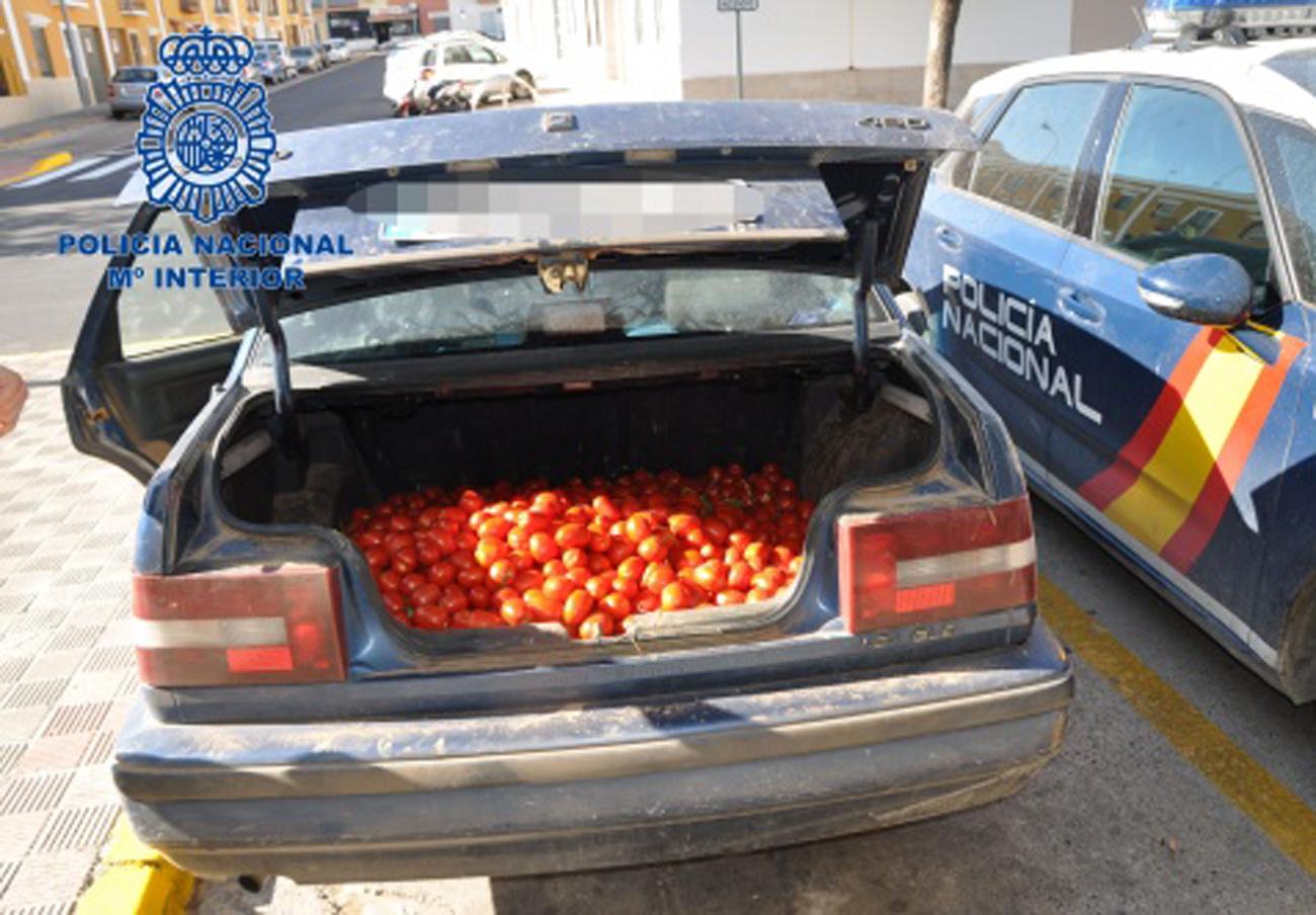 Intervenidas en Sevilla cuatro toneladas de tomates, melones y sandías tratadas con productos tóxicos