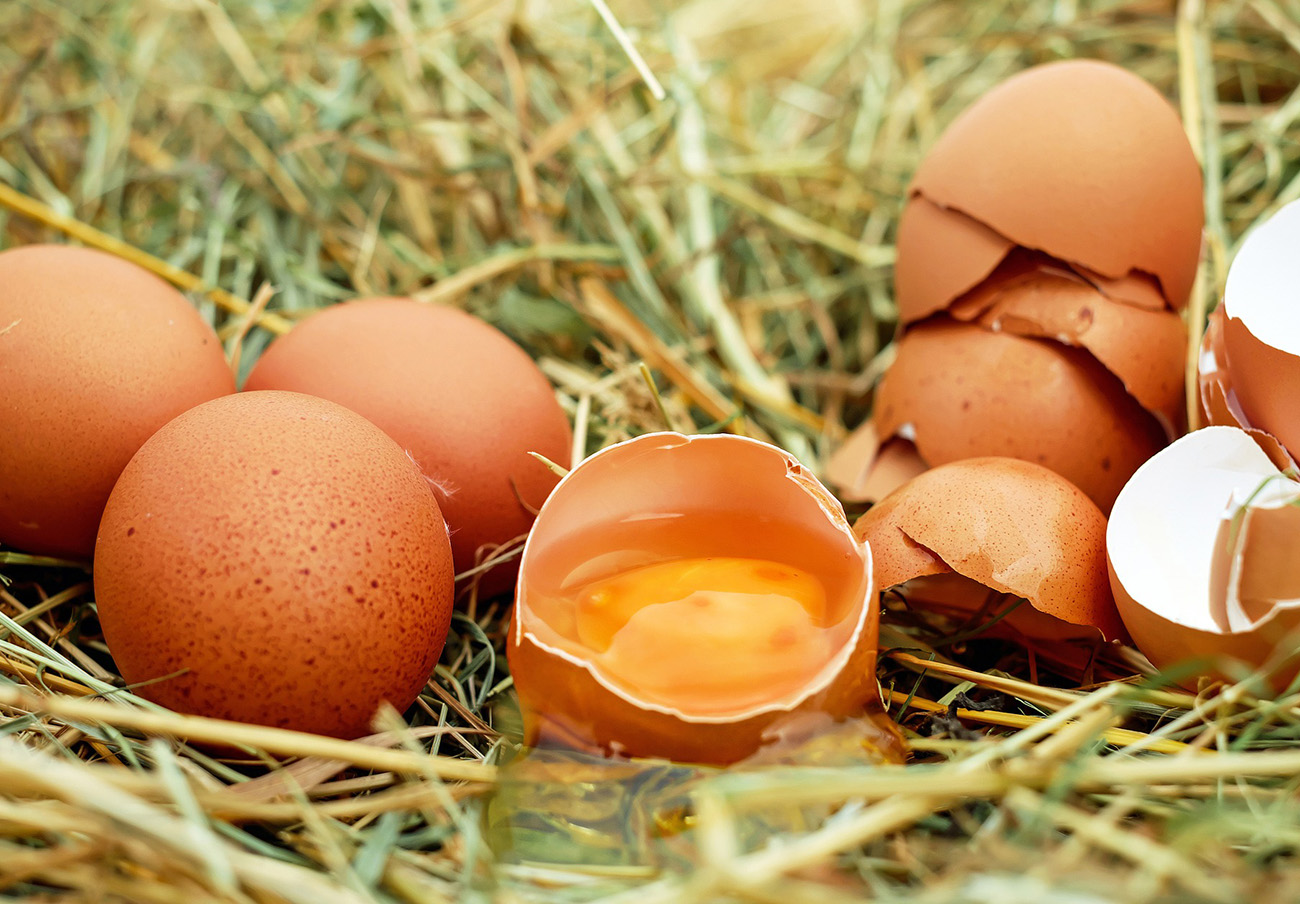 FACUA pide a Sanidad que aclare si en España hay huevos contaminados por fipronil como en otros 7 países