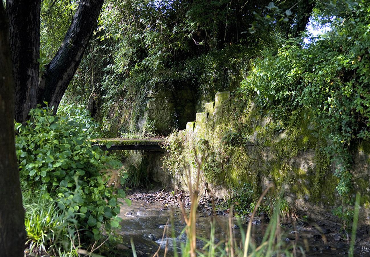 FACUA pide al Principado de Asturias que garantice la calidad de las aguas del río Arlós