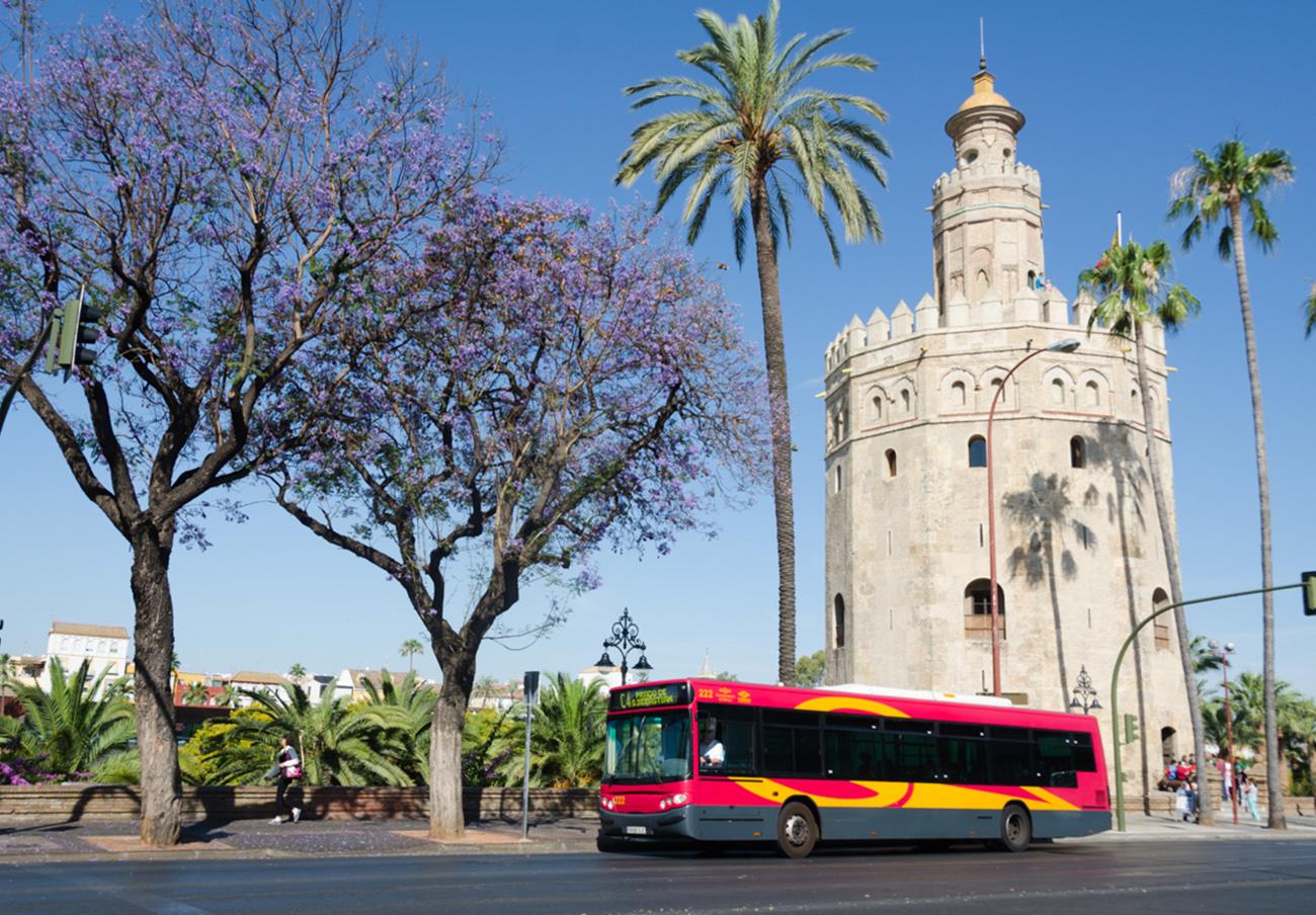 FACUA Sevilla denuncia esperas de hasta 45 minutos tras el recorte de autobuses de Tussam en verano