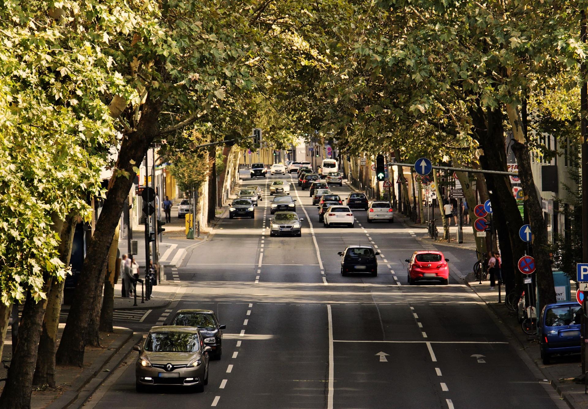 FACUA Madrid logra que un juez anule una multa a un socio por usar supuestamente el móvil mientras conducía