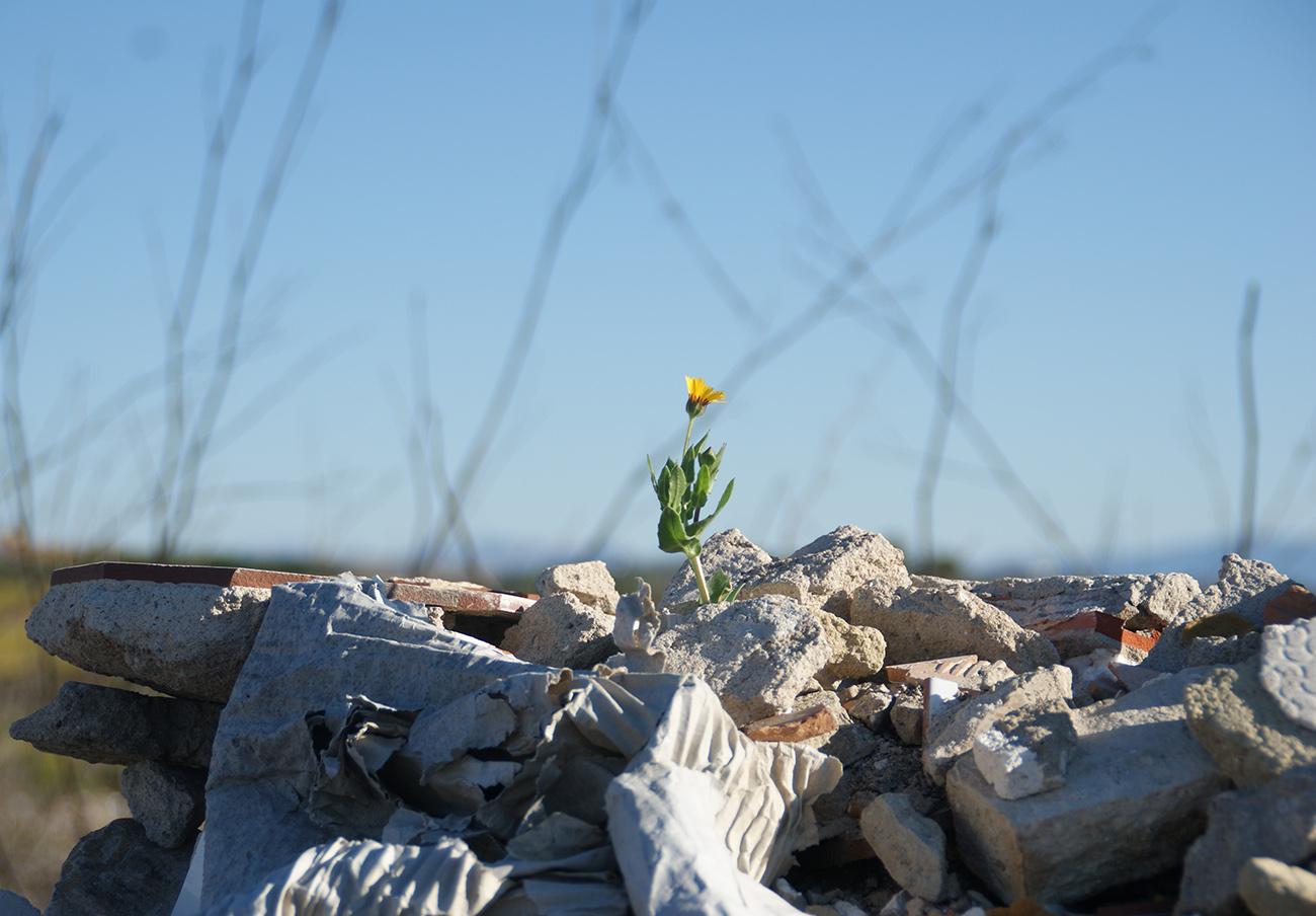 FACUA Andalucía denuncia la falta de participación social en una jornada de la Junta sobre medio ambiente