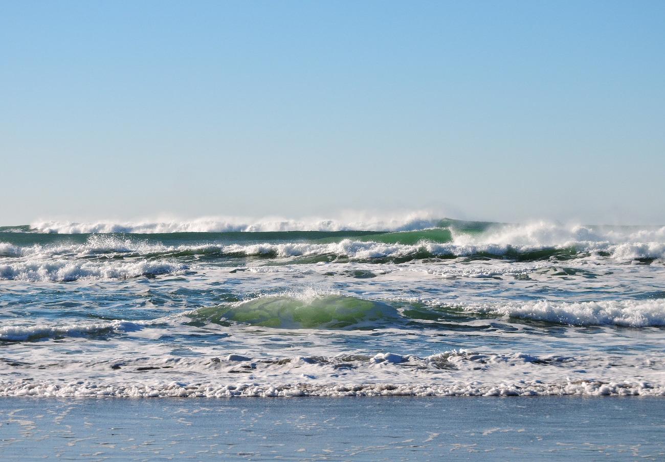 FACUA Granada pide a la Junta medidas urgentes para eliminar la suciedad en las playas de Salobreña