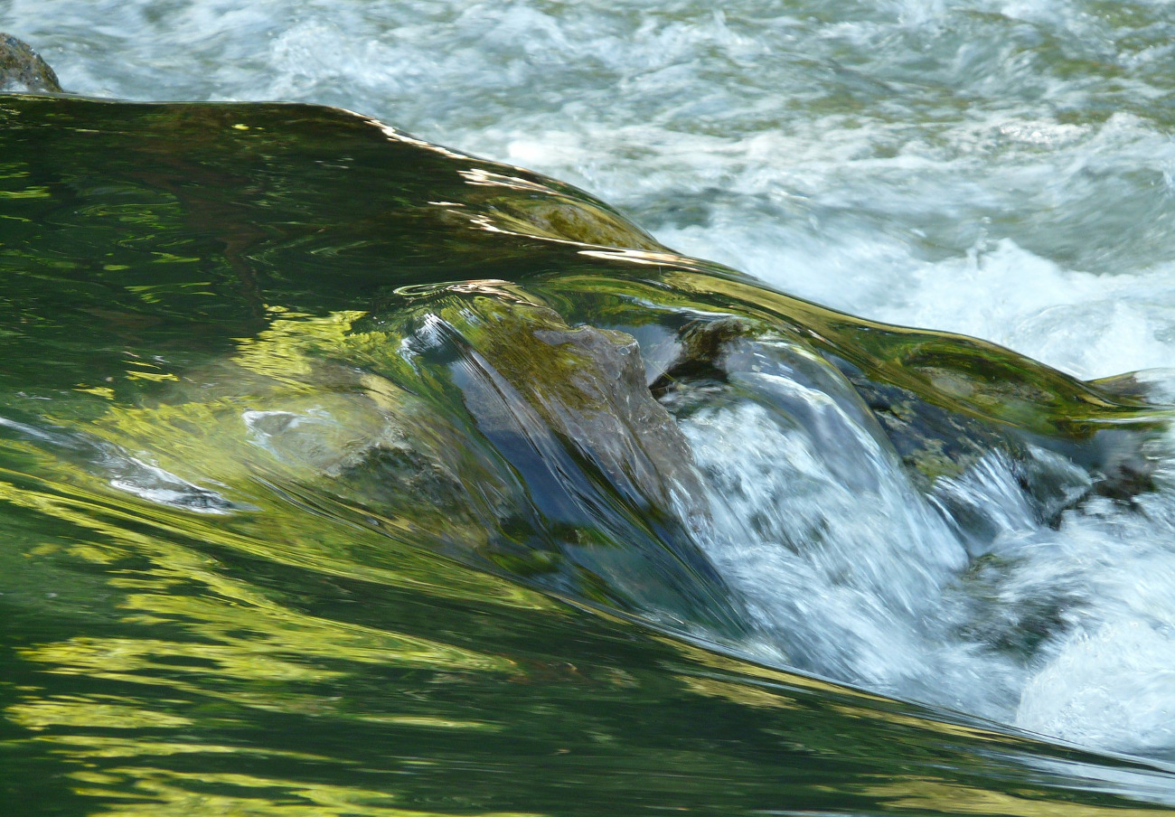 FACUA pide a Infraestructuras de Asturias que solucione el mal estado de conservación del río Piles