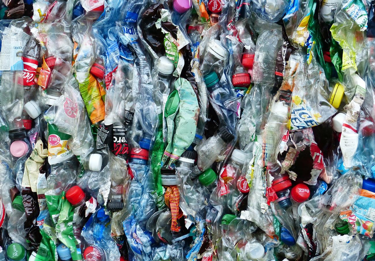 FACUA Andalucía imparte 16 talleres a alumnos de Primaria sobre la importancia de reducir los plásticos