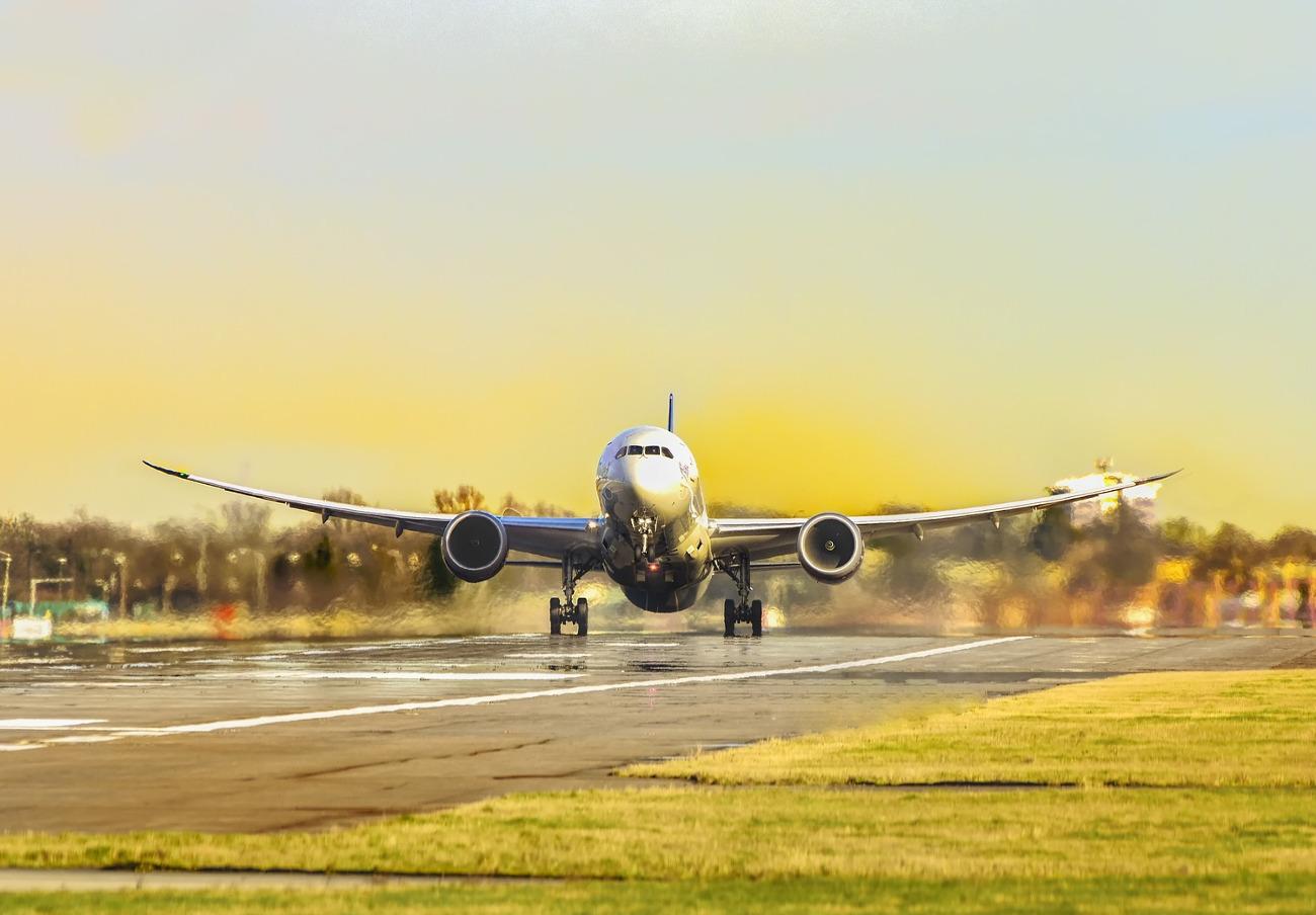 FACUA Euskadi insta a AENA a solucionar los problemas de presencia de buitres en el aeropuerto de Bilbao