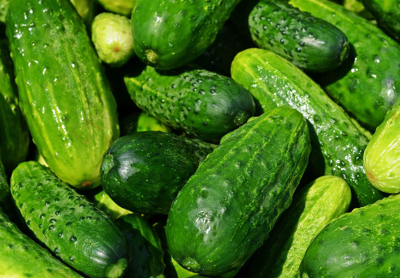 Destapado un fraude alimentario de una empresa de Granada que vendía como 'bio' pepinos convencionales