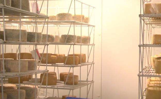 Listeria: Ordenan la retirada de todos los productos de la quesería guipuzcoana Berroeta