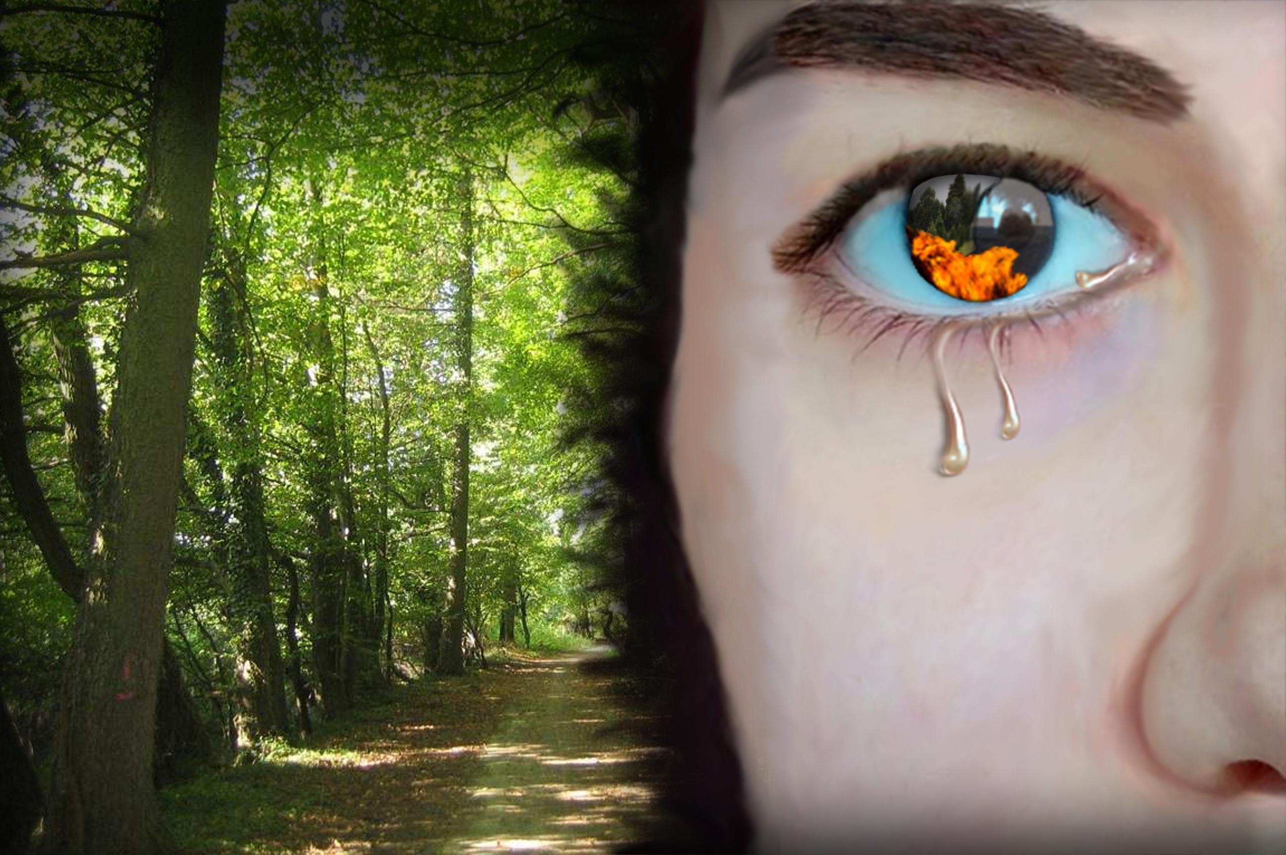 'Los ojos son el reflejo del alma', de Alba Ramírez López. Tercer premio.
