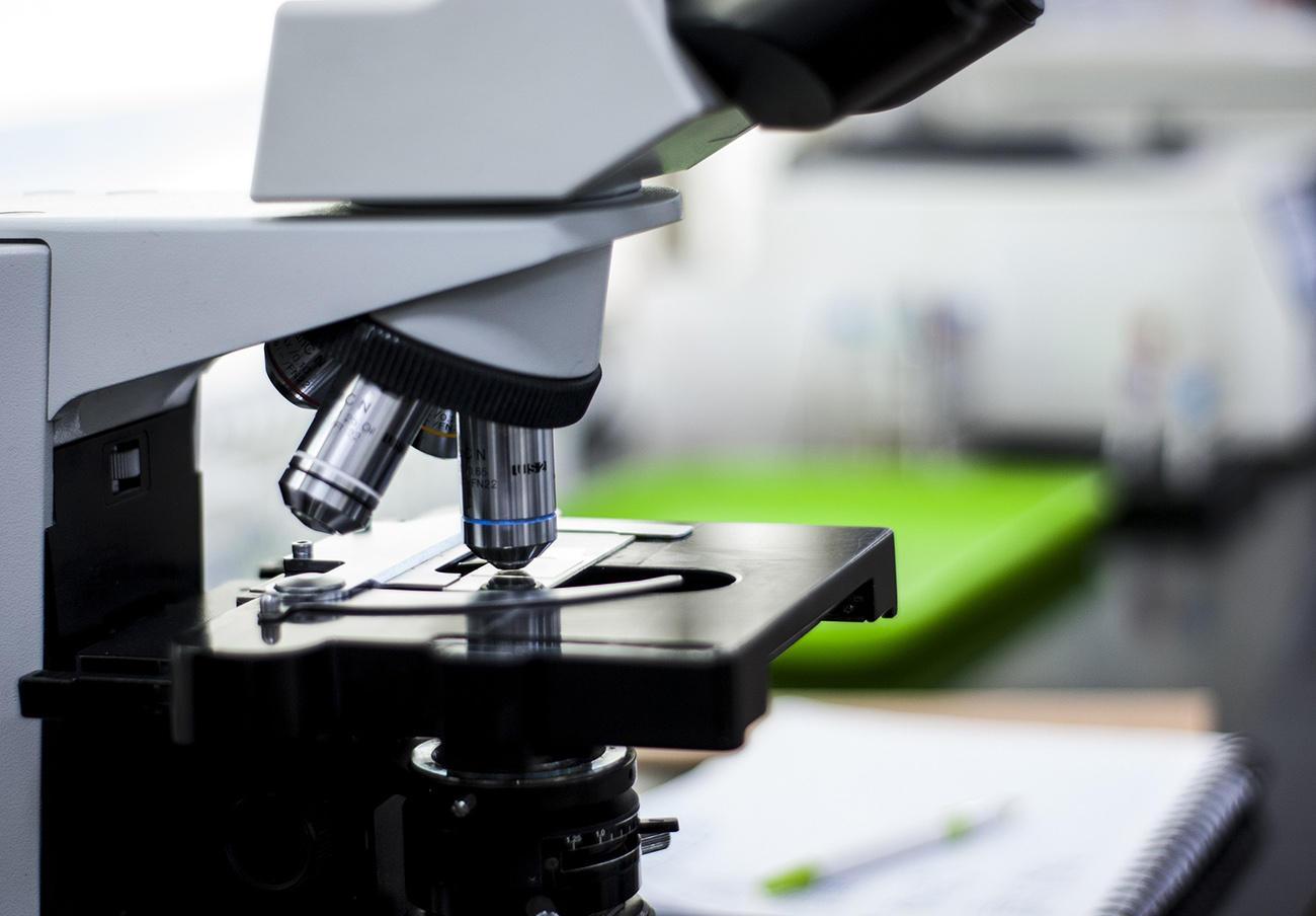 Científicos españoles descubren una combinación de medicamentos que revierte la artrosis