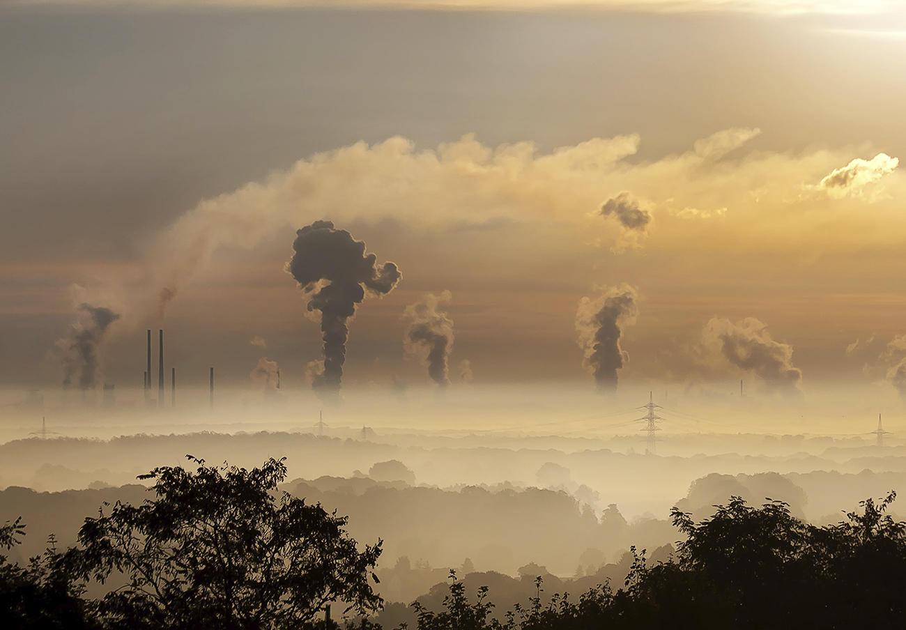 Un estudio señala que la alta exposición a la contaminación en niños de un año afecta a su cerebro