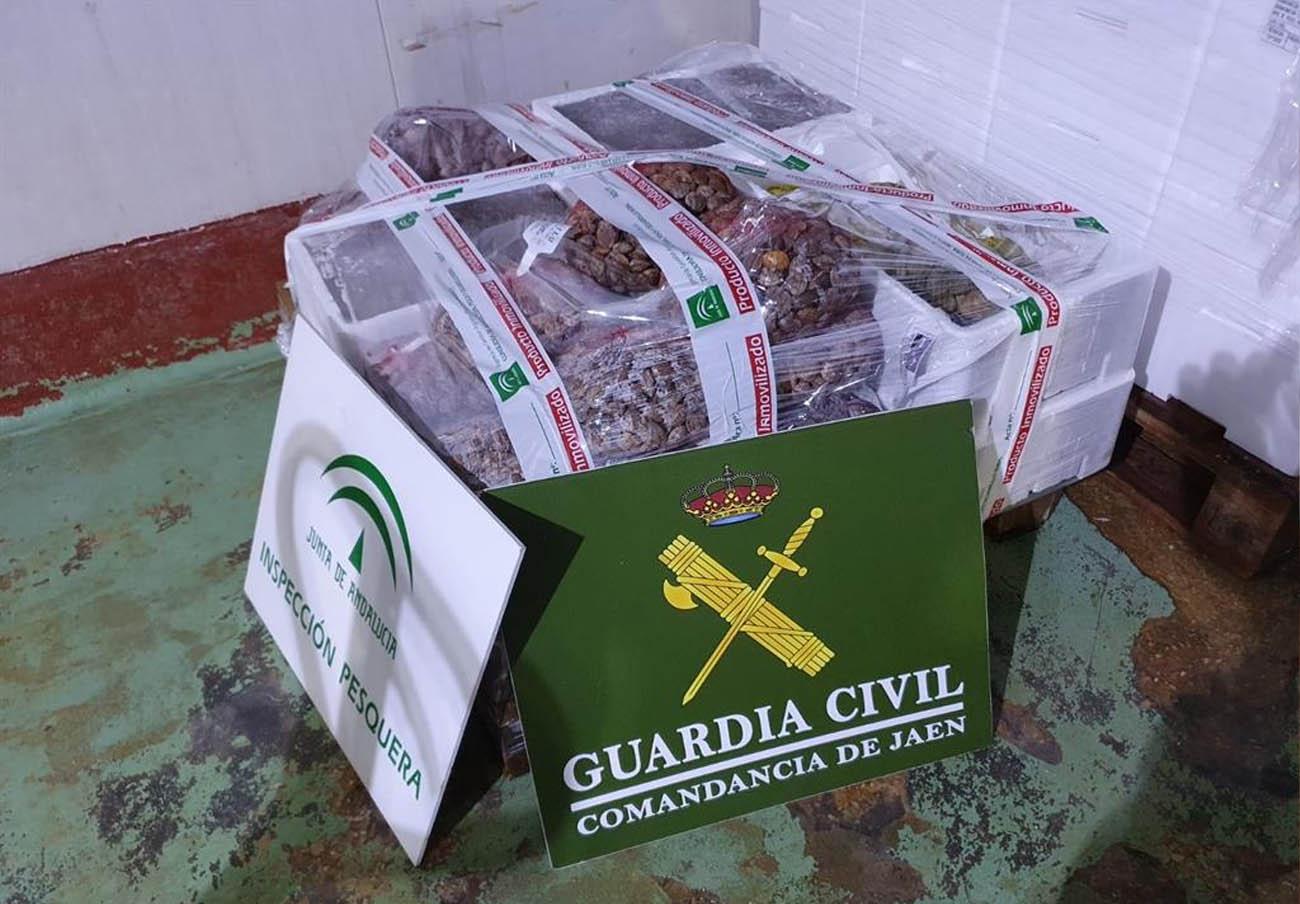 Intervenidos en Jaén 129 kilos de almejas y calamares al superar la fecha de consumo preferente