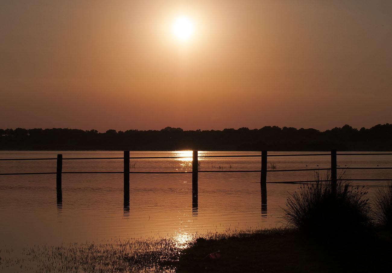 El TJUE falla que España no ha adoptado las medidas adecuadas para proteger el humedal de Doñana