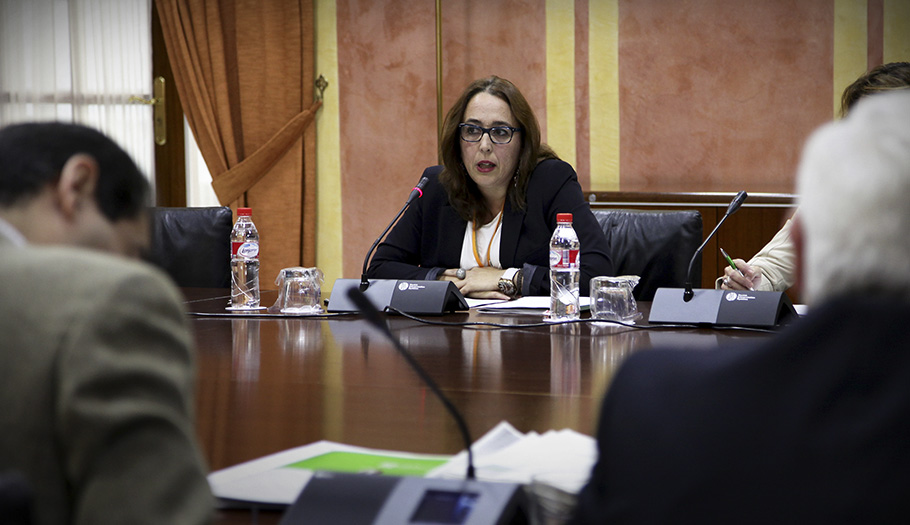 FACUA Andalucía considera ridículos los presupuestos de la Junta para la protección de los consumidores