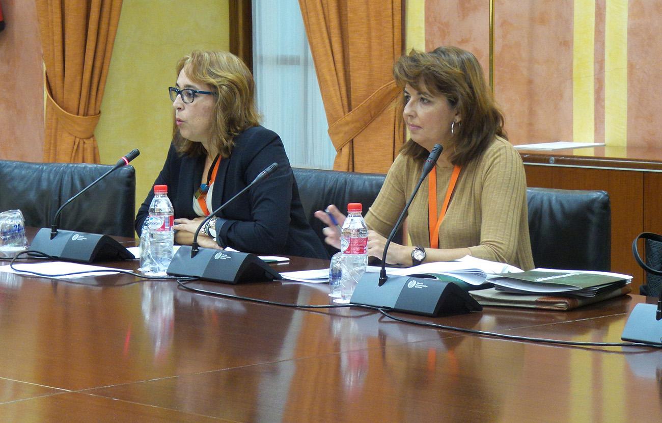 El presupuesto andaluz de 2016 no da respuesta a las necesidades de la ciudadanía, valora FACUA Andalucía
