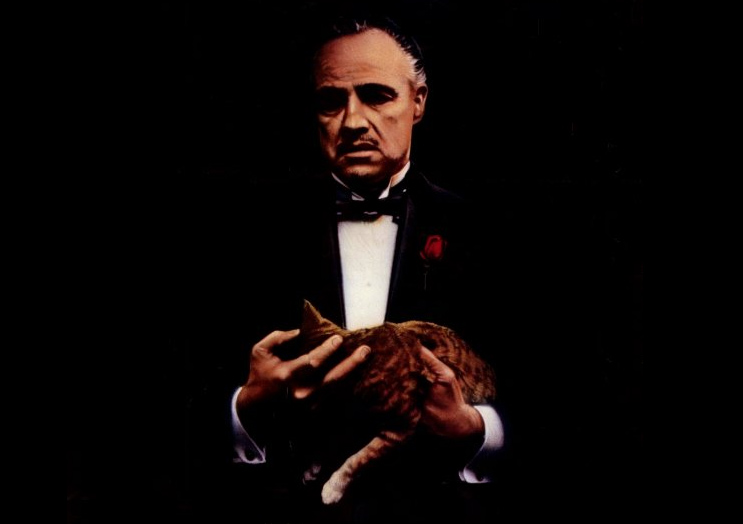 Don Vito y su gato, más serio que un banquero tras conocer la sentencia del TJUE sobre la cláusula suelo. | Imagen: Paramount.